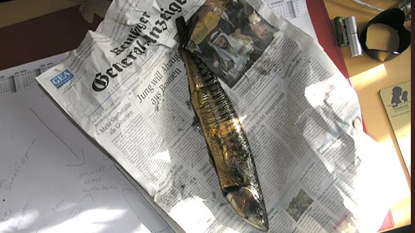 Office 2010 – alte Zeitungen und Fisch